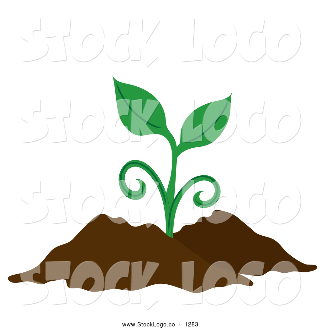 Dirt plant in. Vector of a sprouting
