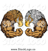 Vector Clipart of a Bald Eagle and Falcon Flexing and Facing off Logo by Chromaco