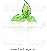 Vector Clipart of a Green Leaf and Reflection Logo by Cidepix