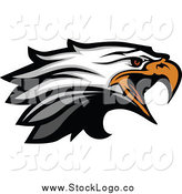 Vector Clipart of a Tough Bald Eagle Head Squacking Logo by Chromaco