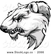 Vector Clipart of a Tough Polar Bear Mascot Head Growling by Chromaco