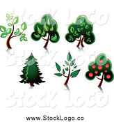 Vector Clipart of Trees by Vector Tradition SM