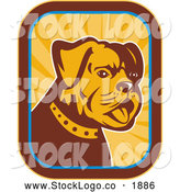 Vector Logo of a Bulldog and Rays Logo by Patrimonio