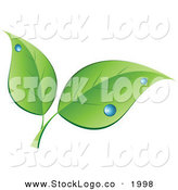 Vector Logo of a Couple of Green Leaves with Blue Dew Drops on Top by KJ Pargeter