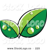 Vector Logo of a Pre-Made Logo of Lush Green Leaves with Dew Drops, with Space for a Business Name and Company Slogan Below by Beboy