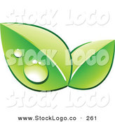 Vector Logo of a Pre-Made Logo of Two Green Dew Covered Leaves over Space for a Business Name and Company Slogan on White by Beboy
