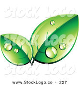 Vector Logo of a Pre-Made Logo of Two Organic Green Leaves Wet with Dew, with Space for a Business Name and Company Slogan Below by Beboy