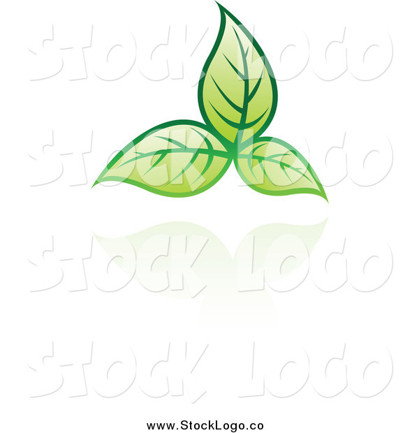 Vector Clipart of a Green Leaf and Reflection Logo
