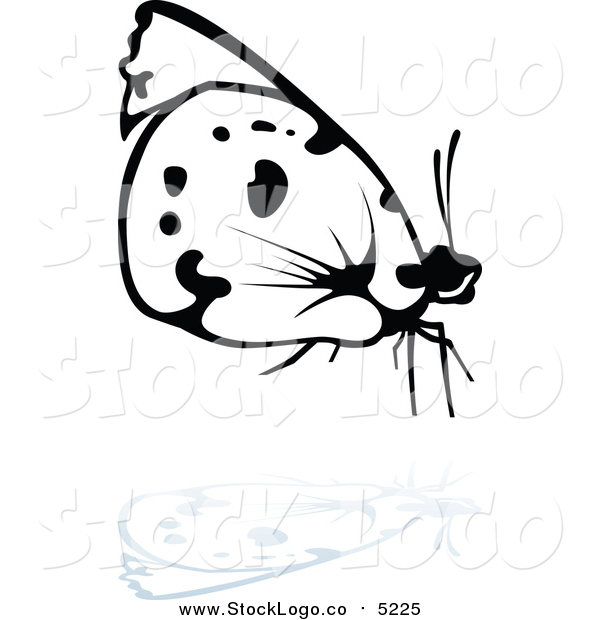 Vector Clipart of a Logo of a Black and White Butterfly and Reflection, Facing Right
