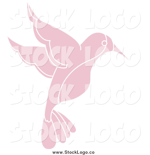 Vector Clipart of a Pink Flying Hummingbird
