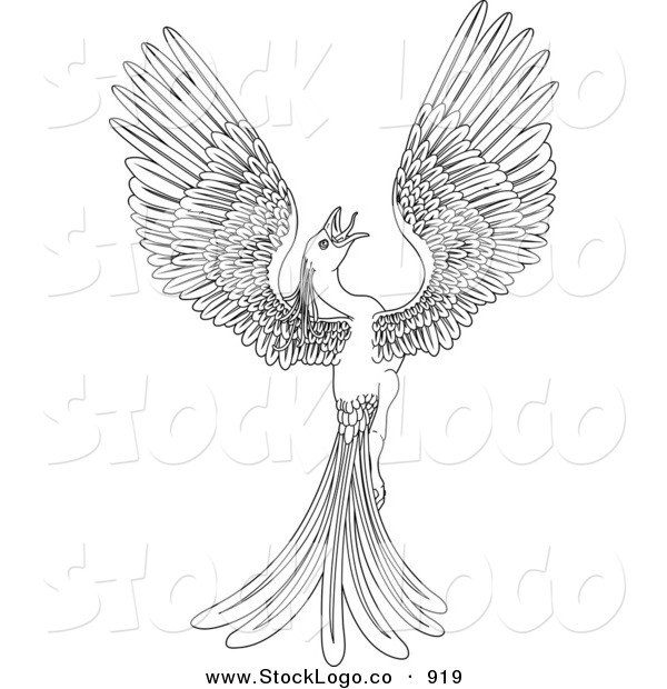 Vector Logo of a Black and White Coloring Page of a Magical Flying Phoenix Bird on White