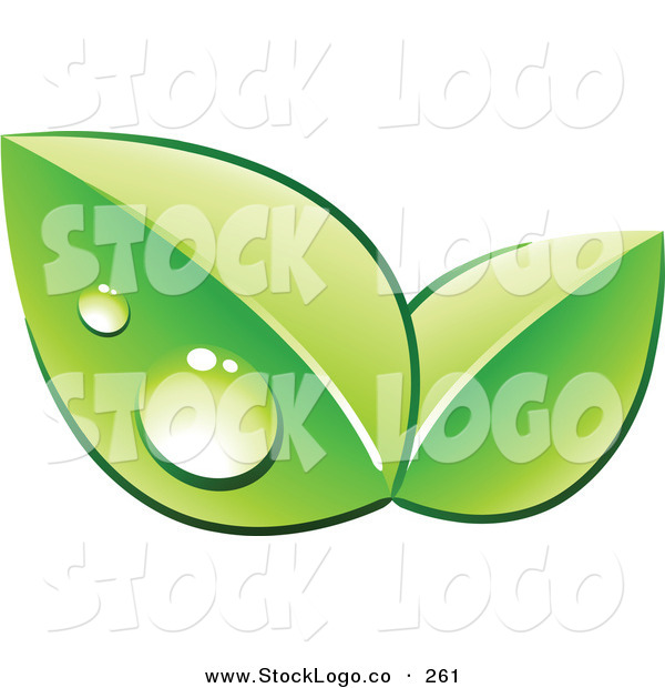 Vector Logo of a Pre-Made Logo of Two Green Dew Covered Leaves over Space for a Business Name and Company Slogan on White