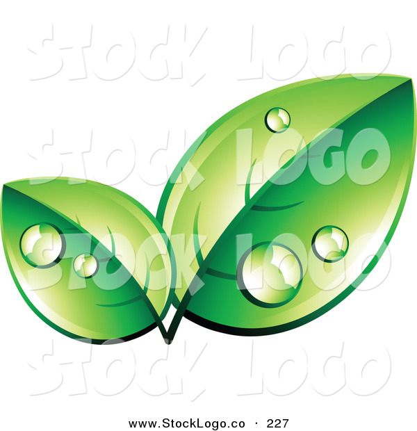 Vector Logo of a Pre-Made Logo of Two Organic Green Leaves Wet with Dew, with Space for a Business Name and Company Slogan Below