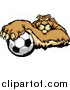 Vector Clipart of a Puma Cougar Mountain Lion Resting One Paw on a Soccer Ball by Chromaco