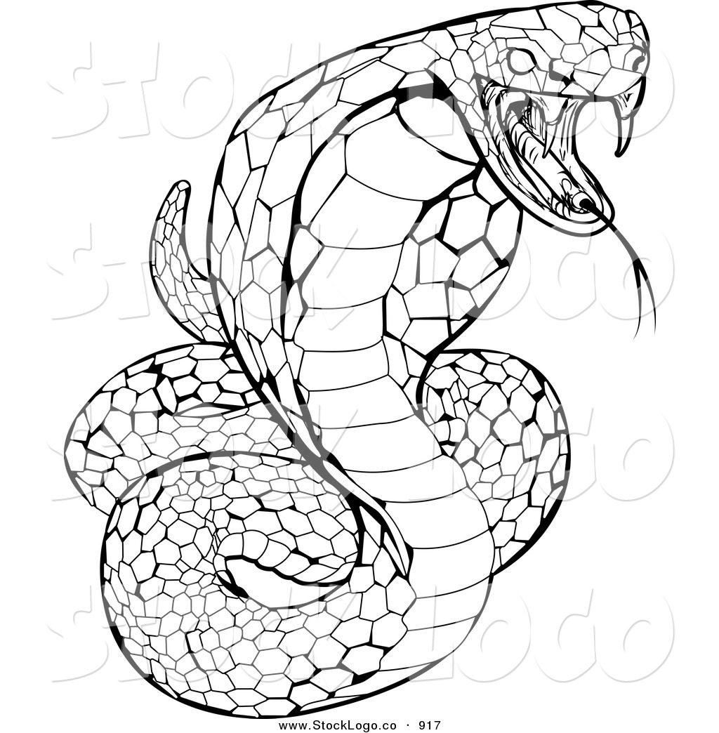 Rattlesnake Head Coloring Pages Printable